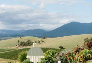 Stunning Yarra Valley winery wedding at Levantine Hill photo by Erin & Tara hills