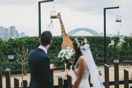 Epicure at Taronga Zoo, Unique Wedding Venue, Bride and Groom Wedding Photo with Giraffe
