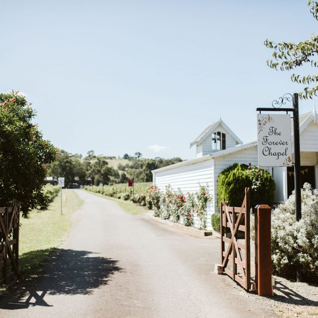 Fergusson Winery Vineyard Tours, Grounds
