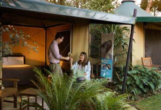 Roar and Snore Accommodation, Taronga Zoo Sydney