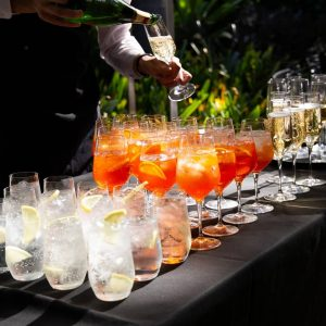 http://Beverages%20at%20The%20Terrace,%20Royal%20Botanic%20Gardens%20Melbourne