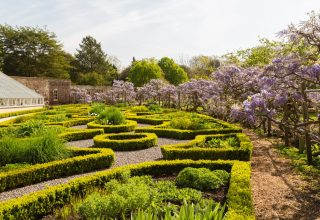 Fulham Palace London Wedding & Events Venue, View of Maze, Garden & Marquee